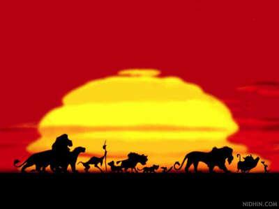 Lion King movie sunset
