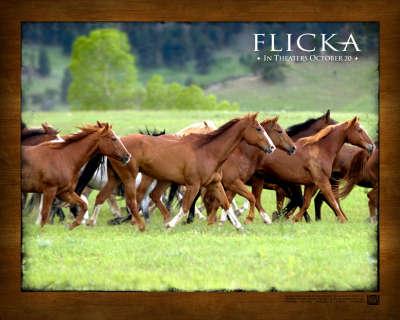 Flicka 002