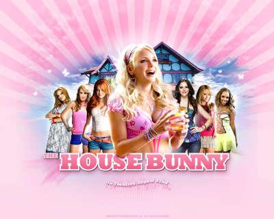 House Bunny 002