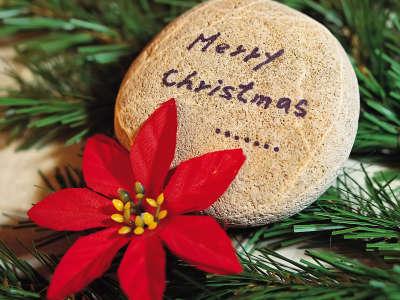 Christmas (156)