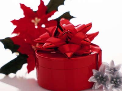Christmas (92)