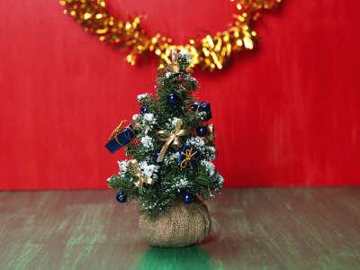 Christmas (96)