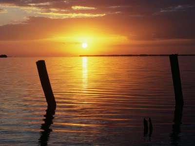 A New Day Begins, Everglades National Park