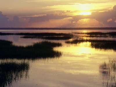 Dawn Breaking, St. Joseph Peninsula, Florida