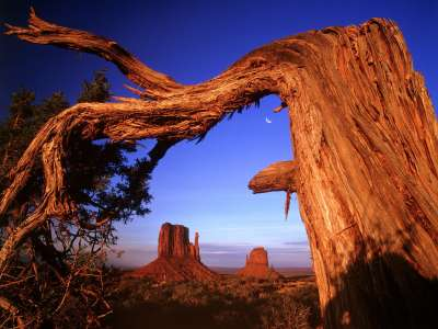 Fallen, Monument Valley, Arizona   1600x1200   I