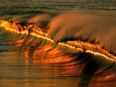 Golden Wave At Sunset, Puerto Escondido, Mexico