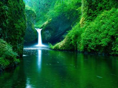 Punch Bowl Falls, Eagle Creek Wilderness Area
