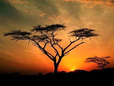Samburu Hills Sunrise, Samburu Game Reservation,