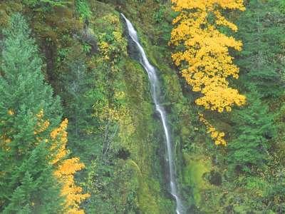 Terwilliger Hot Springs Fall, Oregon