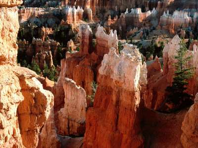 Tower View, Bryce Canyon