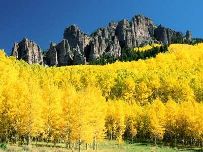 Uncompahgre Peak With Surrounding Aspen, Colorado