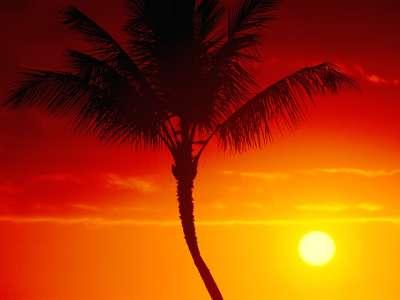 Warmth Of Summer, Maui, Hawaii   1600x1200   ID