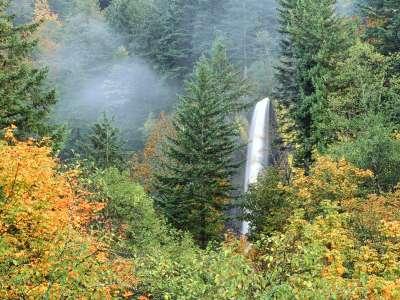 Latourell Falls, Columbia River, Oregon