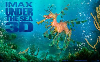 Wp Seadragon 1680x1050