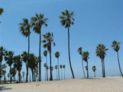2009 Los Angeles 009