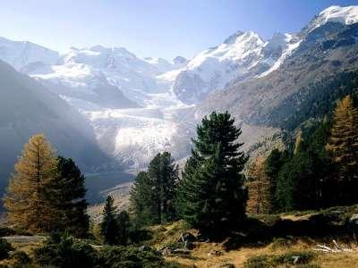 Piz Bernina Moteratsch Glacier Engadine Switzerland