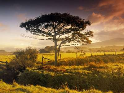 Scenic Near Harlech North Wales Great Britain