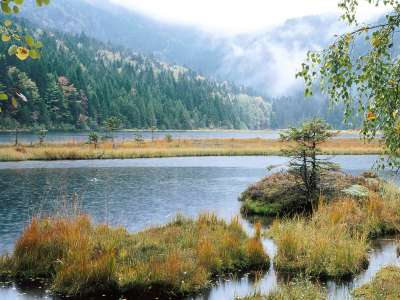 Small Arber Lake Bavarian Forest Germany