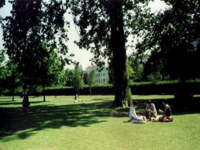 London Dingsbumbs Park 1