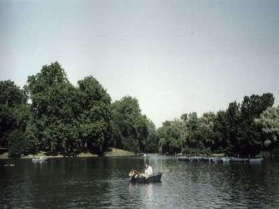 London Dingsbumbs Park 2