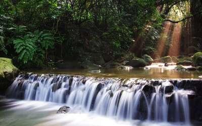 Beauty Waterfall