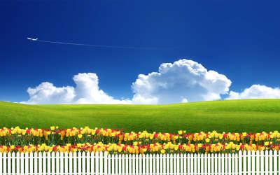 Fantasy Fence