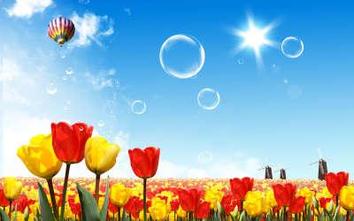 Fantasy Tulip Field