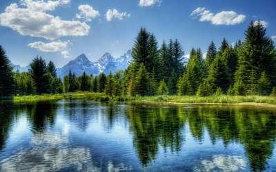 Lake Forrest