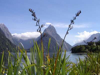 Milford Sound Mitre Peak New Zealand