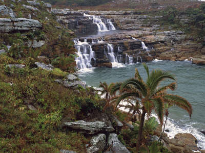 Mkambati Nature Reserve Pondoland Coast South Africa