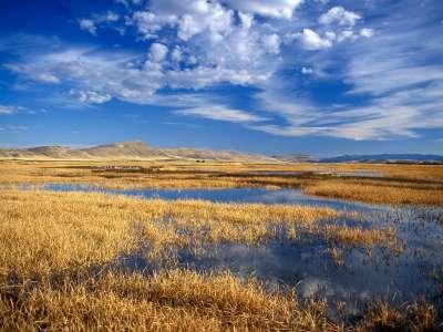 Lower Klamath Lake National Wildlife Refuge California
