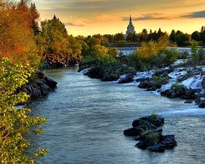 River in Forrest