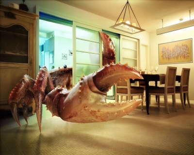 crayfish in room