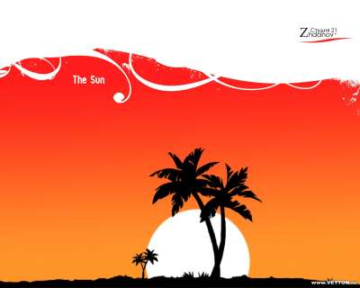 Palms And Sun