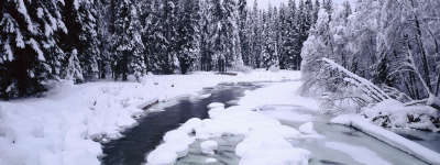 River in Forest on Winter Day