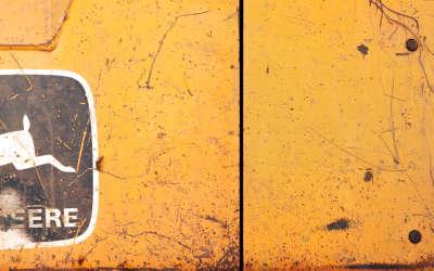 Wall and Emblem