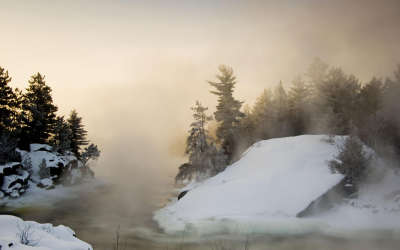 Winter Day with Fog