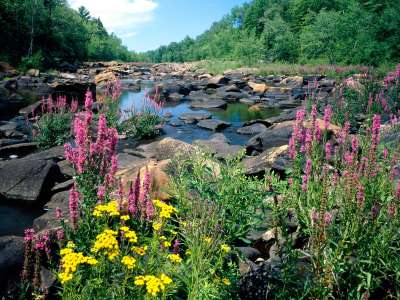 Wisconsin River Ice Age in National Scientific Park