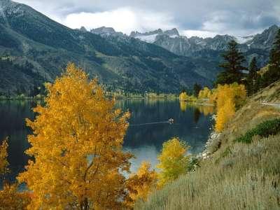 Twin Lakes And The Sawtooth Range Toiyabe