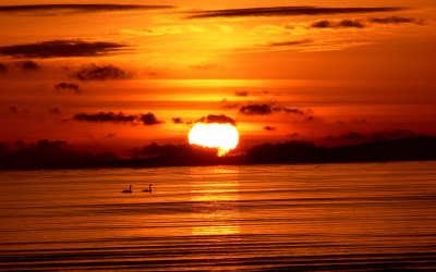 Comox Sunrise
