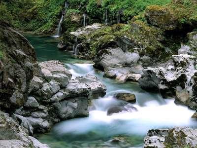 Spring Creek Siskiyou National Forest in Oregon