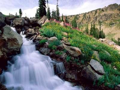 Spring Grand Teton National Park