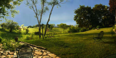 Peacefull Meadow