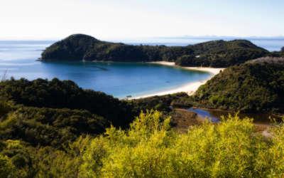 Sea Hills