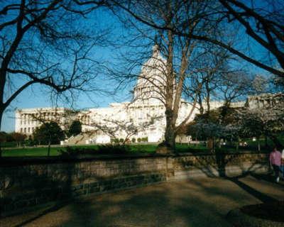 Washington DC 124