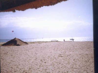 Bali26
