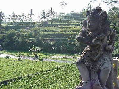 Tripluca Best Of Bali 4 Jpg