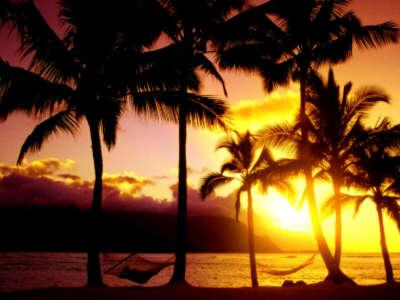 An Afternoon In Paradise Kauai Hawaii