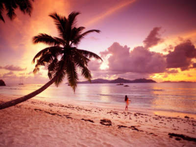 Twilight Paradise on Seychelles