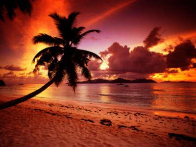 Twilight Paradise La Digue Seychelles